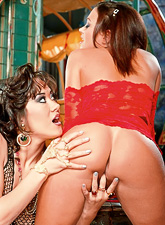 Slutty dyke chicks Asia Carrera and Terri Summers have wild sex in slutty lingerie.