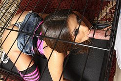 Tattooed emo babe Jynx Maze sucks cock from a cage and then gets fucked roughly.